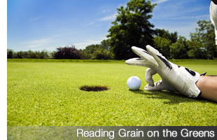 Reading Grain on the Greens